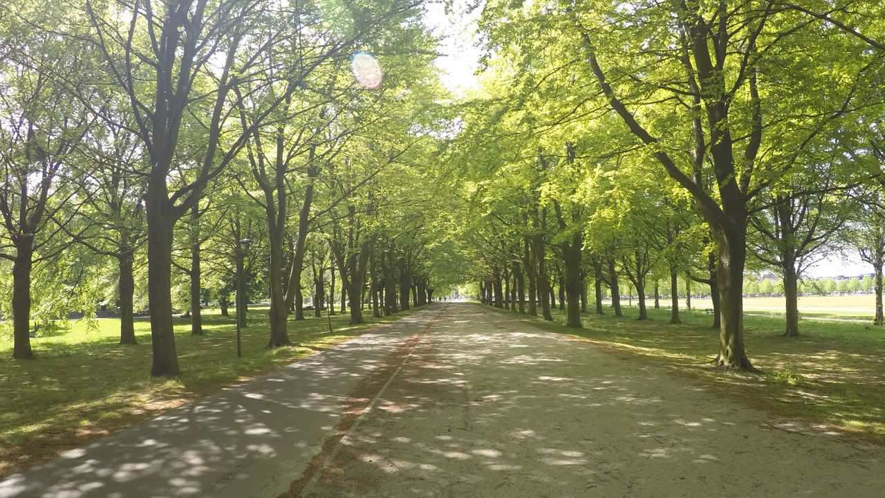 path.eisenhower.netherlands.jpg